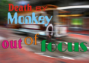 Death By Monkey