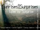 sunrisesandsurprises